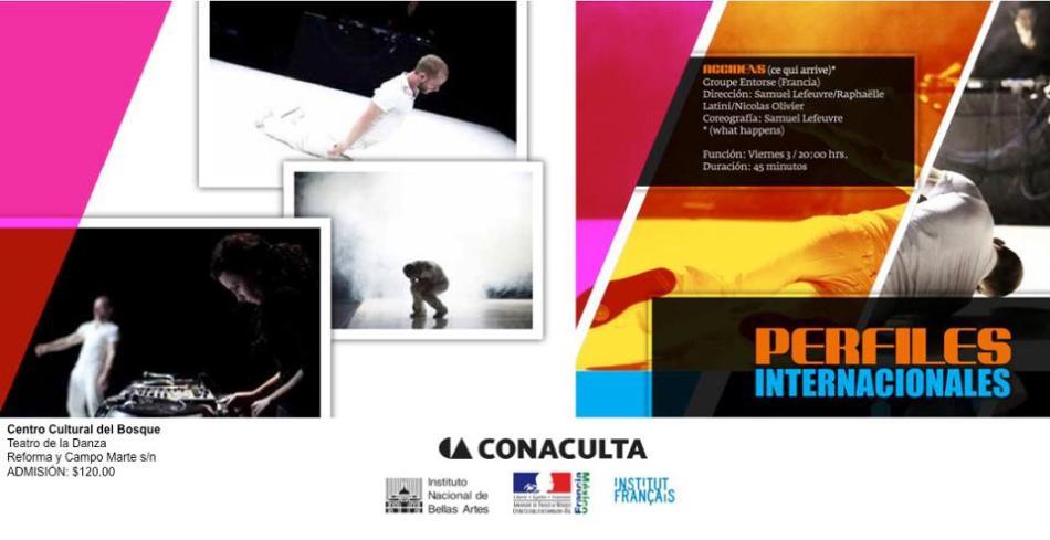 PERFILES INTERNACIONALES - DANZA - INBA - CONACULTA