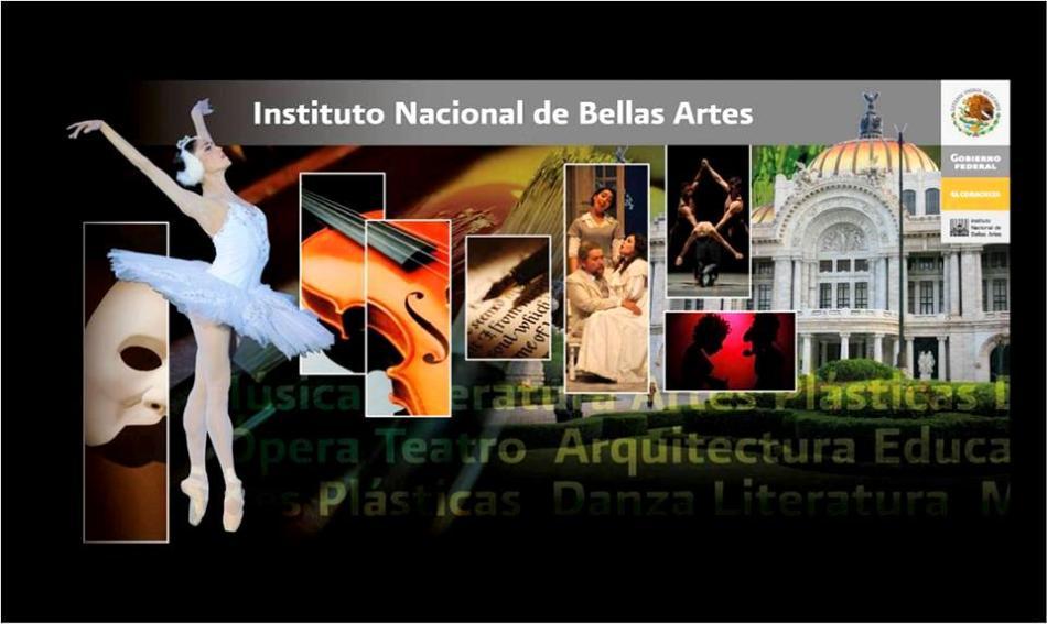 INBA - FOTO - AREAS ARTISTICAS