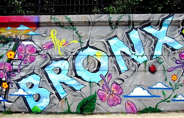 NEW YORK CONFIDENCIAL - NEW YORK - BARRIOS  - BRONX - CANAL 22