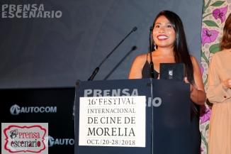 roma - ficm - conferencia - alfombra (55)