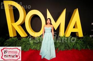 roma - premiere - cuaron - mexico (71)