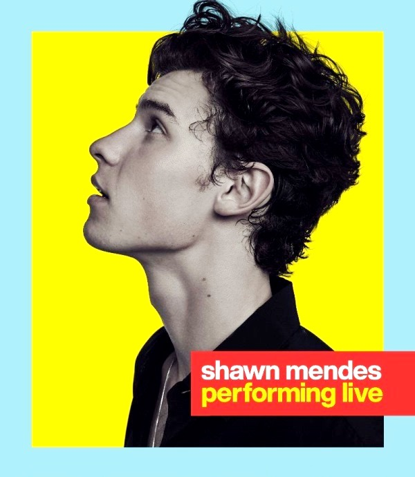 shawn mendes mtv video music awards performance