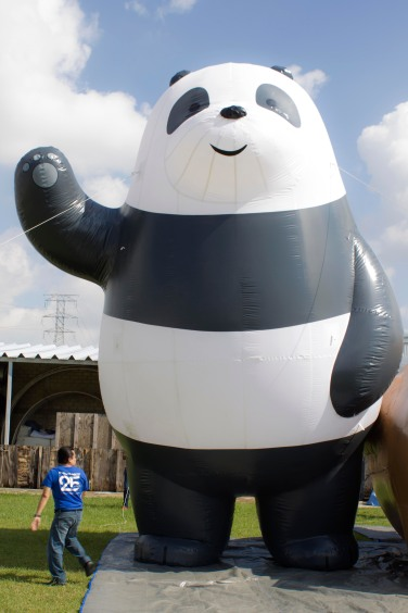 bolo fest panda