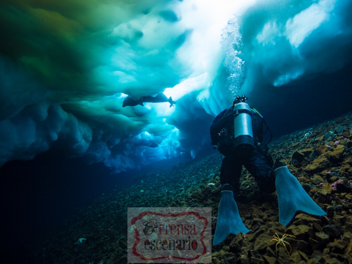 Picture Shows: Hugh Miller filming Weddell seals under the sea ice for Seven Worlds One Planet. McMurdo, Antarctica