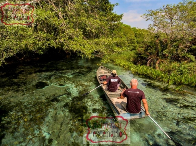 Picture Shows: Behind the scenes. Cameraman Cristian Dimitrius guides the film crew through a maze of crystal clear creeks in southern Brazil. His aim is to capture underwater footage of anaconda, the largest snake in the world, stalking their prey.