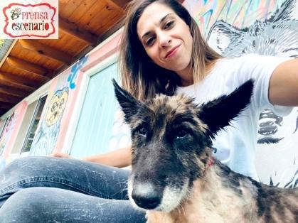 animal planet - dog tv - semana felicida0017