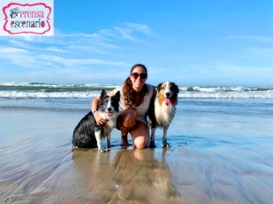 animal planet - dog tv - semana felicida0032